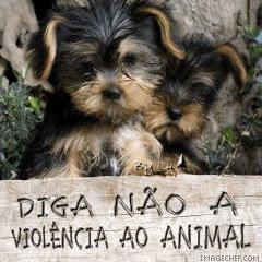 Pelos Direitos dos Animais