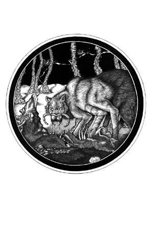 [cf3wolfspider]