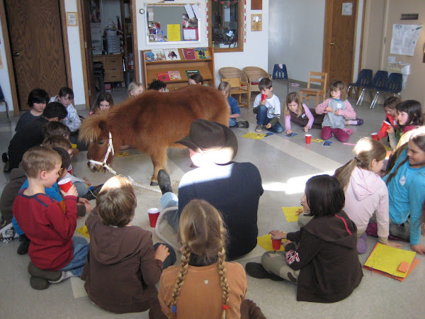 A Miniature Horse Visits the School