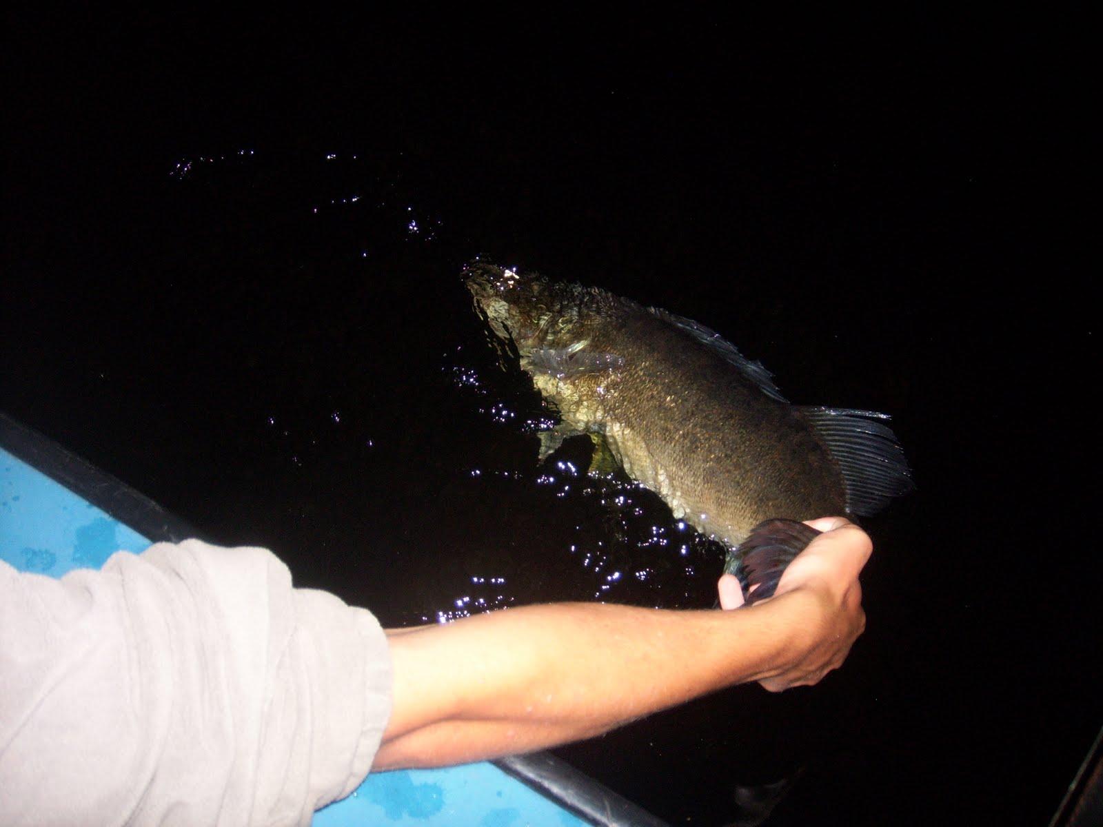 fisk spa stockholm sthlmtjejer