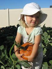 Brynn's Pumpkin
