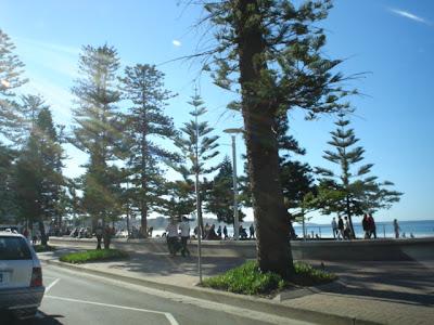 Manly Beach DSC02702