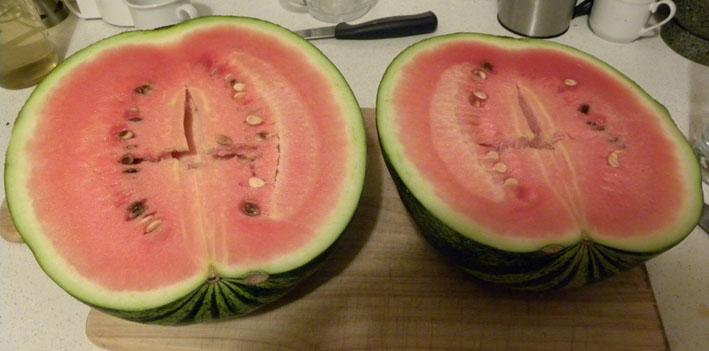 vom wachsen und werden die geschichte mit den melonen. Black Bedroom Furniture Sets. Home Design Ideas