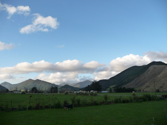 Otra de las scenic views de Rai Valley, en Nueva Zelanda