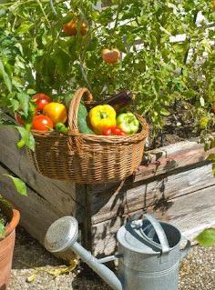 Notas de Jardinería&Paisajismo