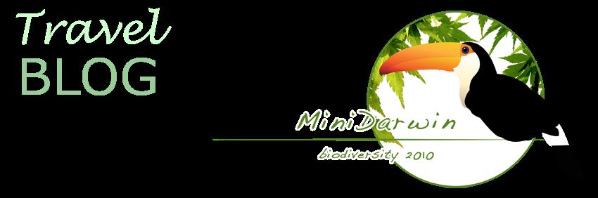 MiniDarwin3