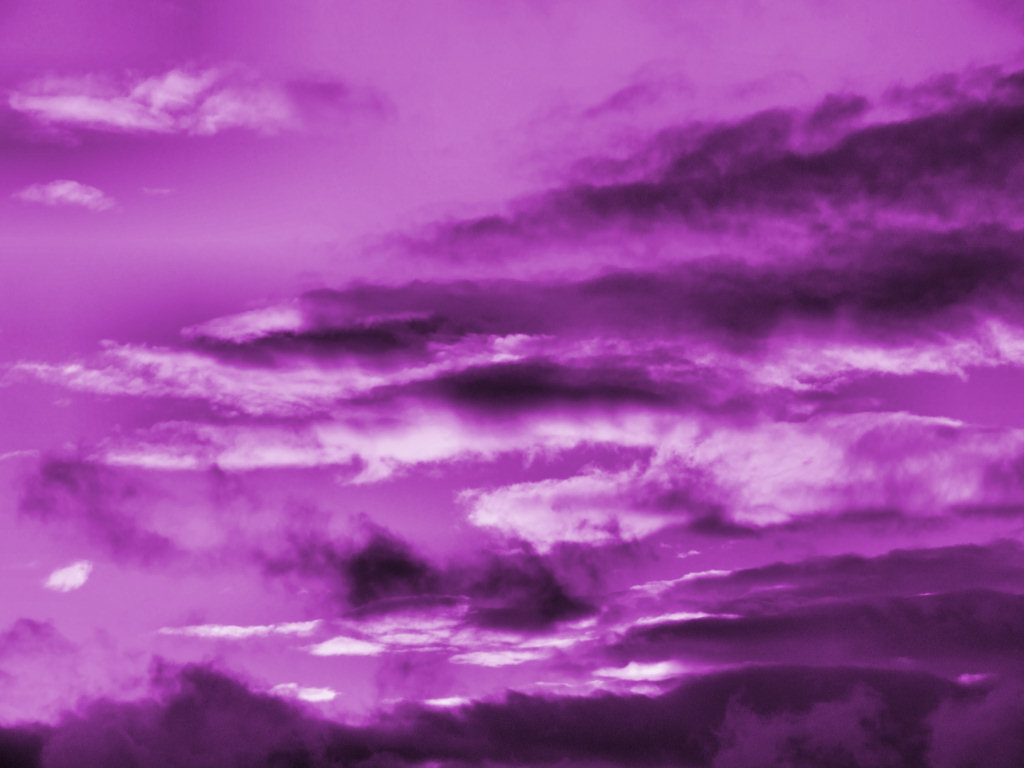 purple wallpaper 3 - photo #35