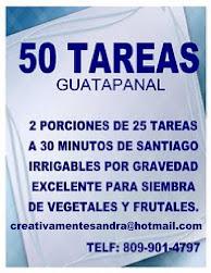 VENDO 50 TAREAS DE TIERRA