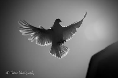 holy spirit be my friend