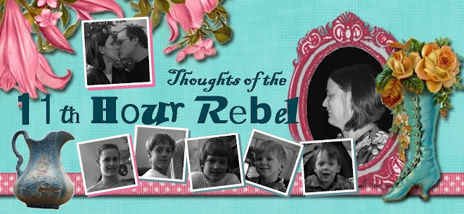 Thoughts of the 11th Hour Rebel