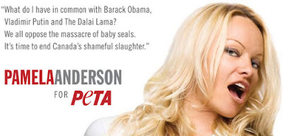 Image of: Mug Vegetarian And Animal Rights Advocate Pamela Anderson To Join dancing With The Stars This Dish Is Veg Vegetarian And Animal Rights Advocate Pamela Anderson To Join