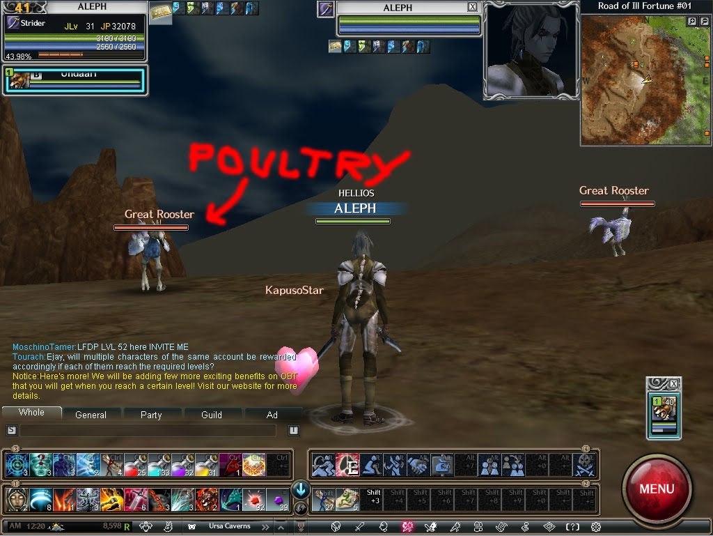 Rappelz Screenshots