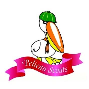 Henry Park Pelican (Cub) Scout