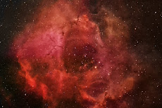 The Rosetta Nebula