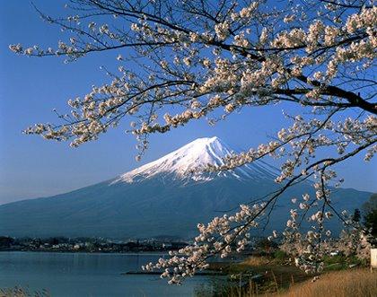 [Mt.+Fuji]