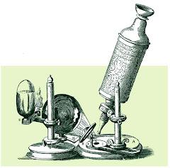 Microscopio rudimentario
