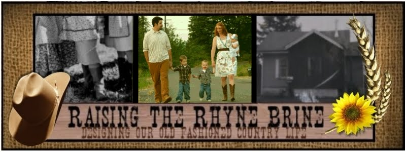 Raising the Rhyne Brine