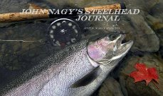John Nagy's Steelhead Journal