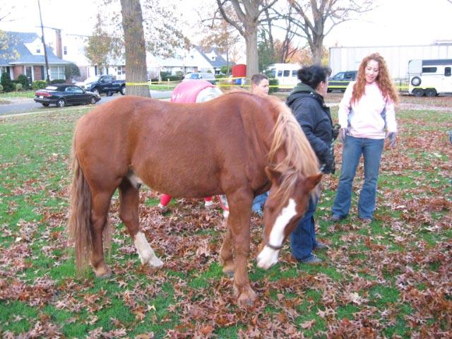 Mineola Mustang '08, pt 2