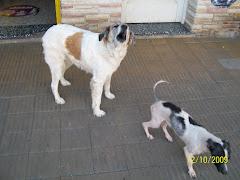 BLANCA Y PABLITO