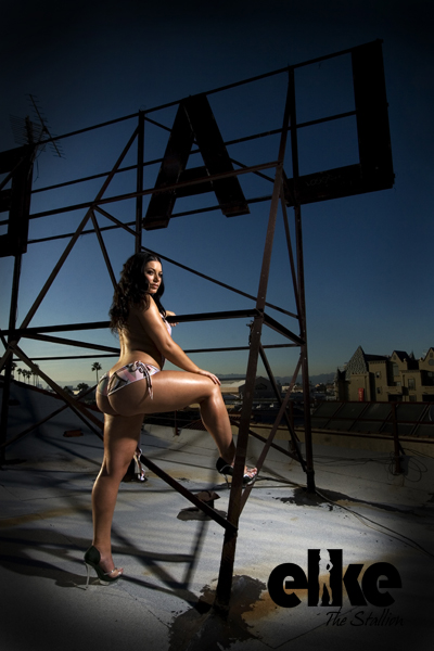 Elke The Stallion