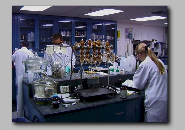 Organisasi Laboratorium  BIOLOGIPEDIA