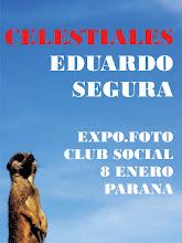Celestiales 2010