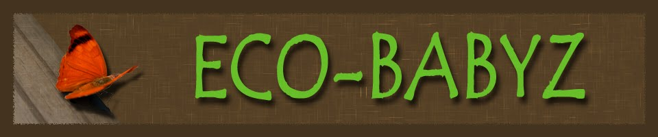 Eco-Babyz Boutique