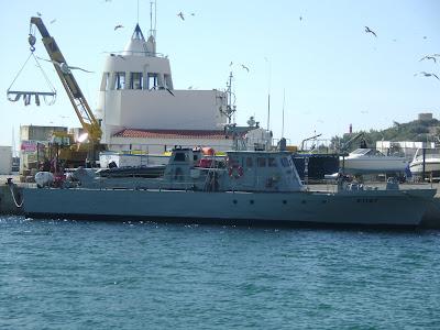 profil kekuatan militer Timor Leste