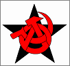 Red & Anarchist Action Network (RAAN)