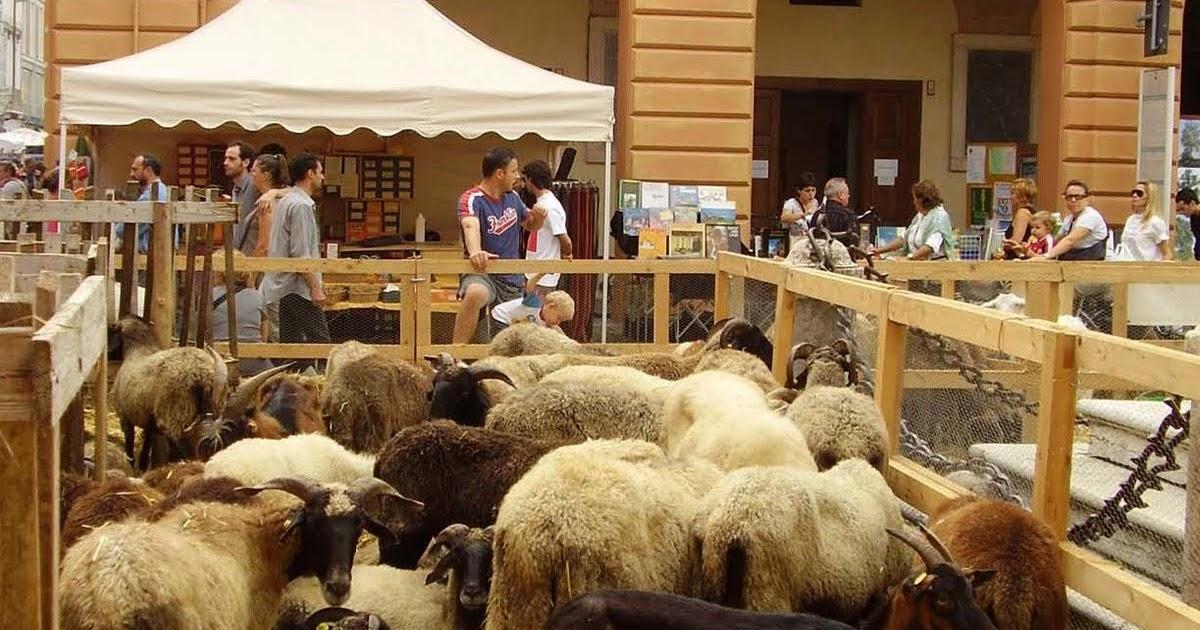 Toscana gourmet nella vecchia fattoria di guastalla for Nuovi piani di vecchia fattoria