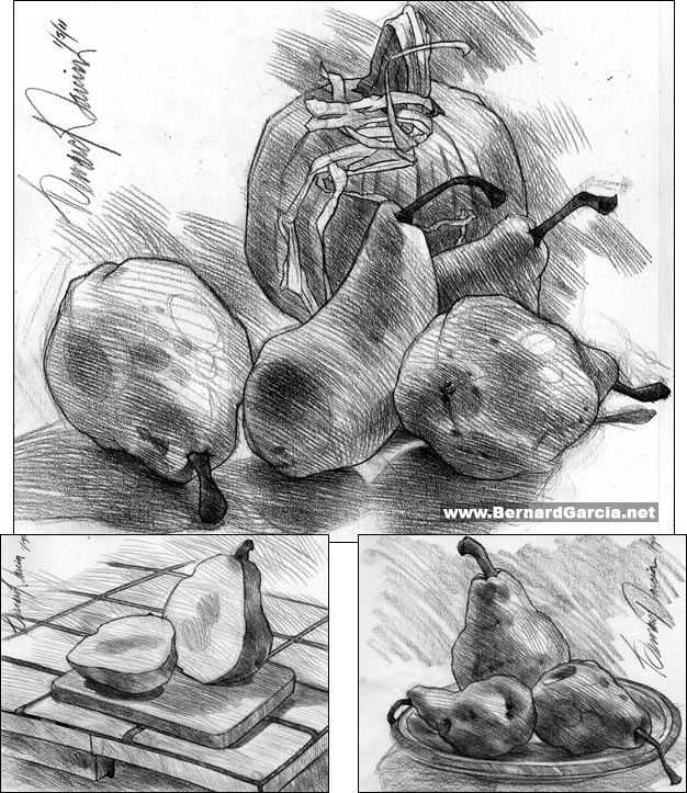 Fruit Sketch Drawing Sketch Study of Fruit Pears