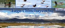Visite el Lago Chinchaycocha