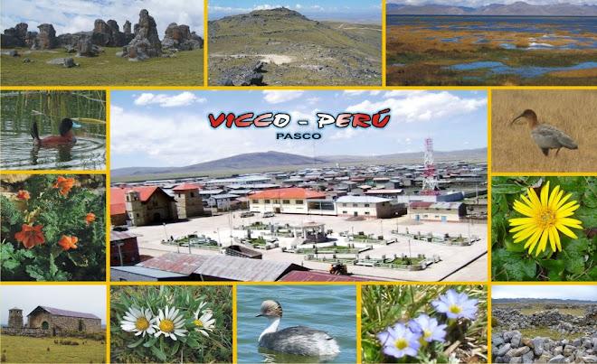 Vicco Perú