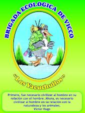 Brigada Ecológica de Vicco