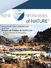 Vota por el Bosque de Piedras de Huayllay