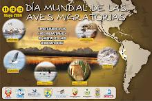 Día  Mundial de las  Aves  Migratorias -  lago Chinchaycoha