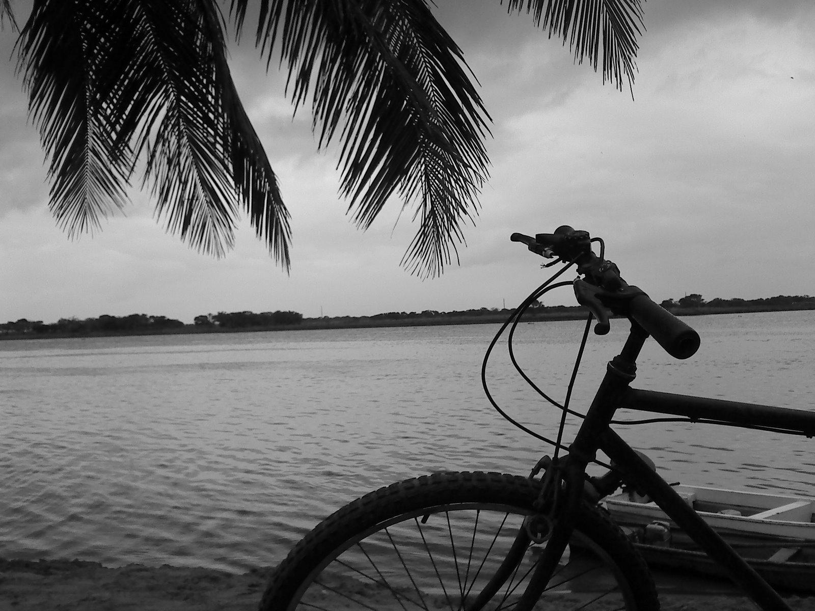 [bicicletas[1]]