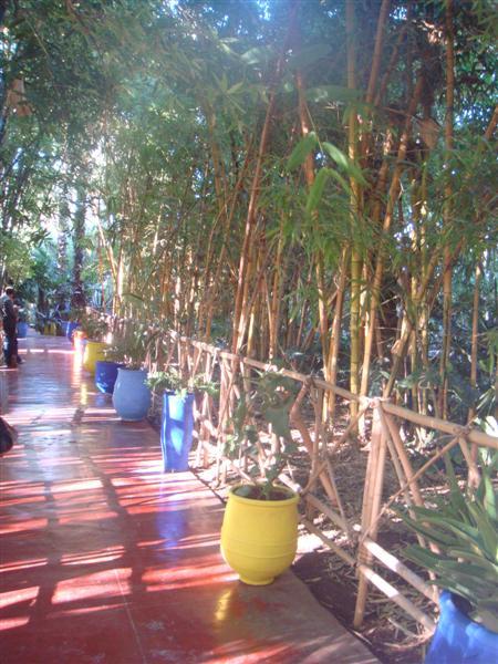 La smala marrakech le jardin majorelle for Au fond du jardin saint saens