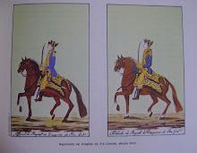 SOLDADOS EM GREVE: duas revoltas militares ocorridas em Rio Grande e Pelotas nos séc. XVIII e XIX