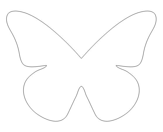 [butterfly.jpg]