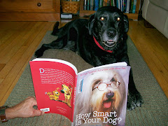 Even Dogs Like To Read!
