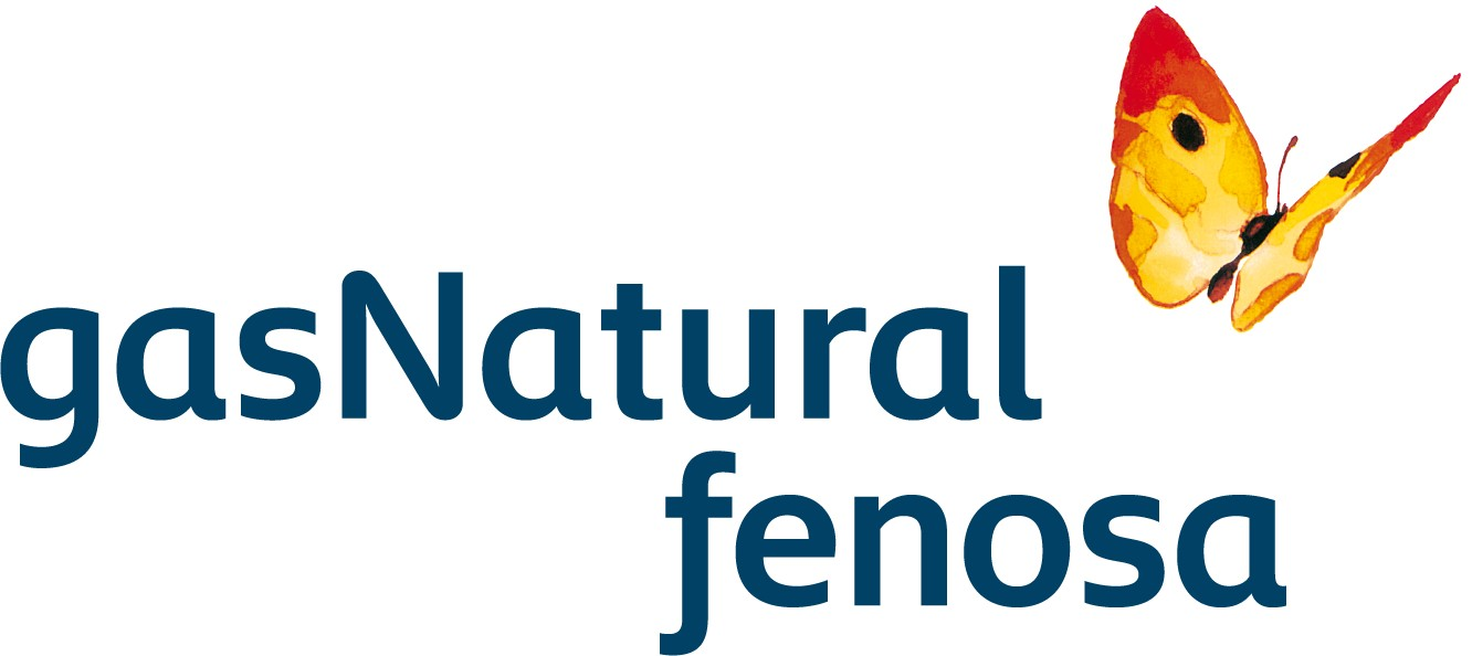 Union Fenosa Gas Natural 5