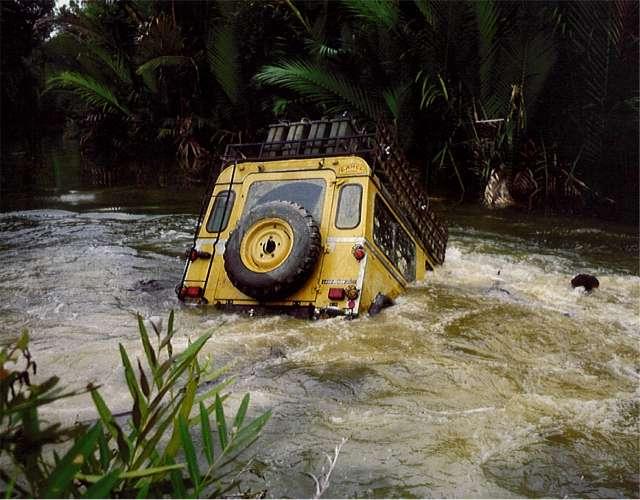 Borneo3.jpg