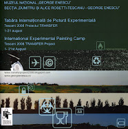 Transfer Project 2008 I catalogue cover