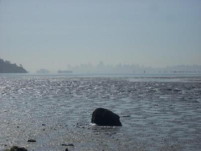 I Left My Sludge in San Francisco