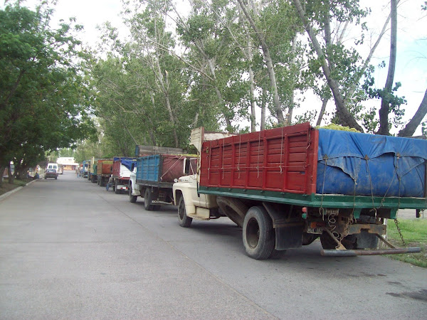 Fila de camiones a la espera de ingresar a la bodega