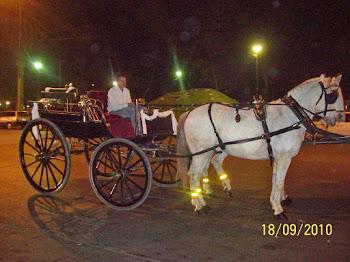 Alquile un medio de transporte no tradicional