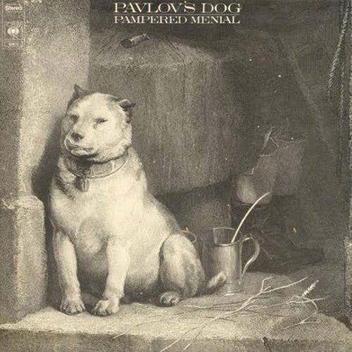 Pavlov S Dog Pampered Menial