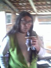 Yerba Caá